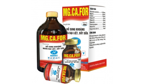 MG.CA.FOR